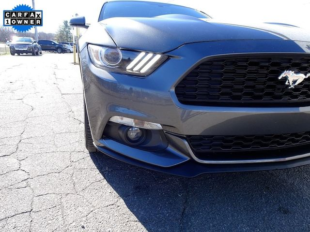 2015 Ford Mustang EcoBoost Madison, NC 8