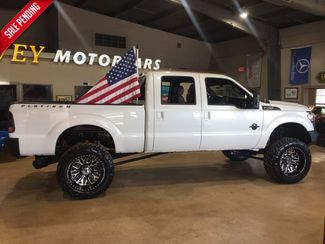 2015 Ford Super Duty F-250 Pickup Platinum in Boerne, Texas 78006