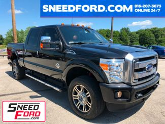 2015 Ford Super Duty F-350 Platinum 4X4 in Gower Missouri, 64454