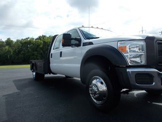 2015 Ford Super Duty F-450 DRW Chassis Cab XL Shelbyville, TN 8