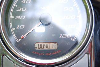 2015 Harley-Davidson Road King® Base Jackson, Georgia 17