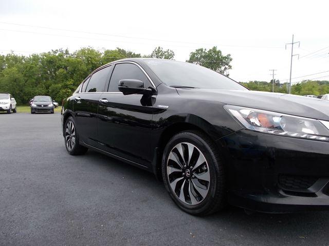 2015 Honda Accord EX-L Shelbyville, TN 8