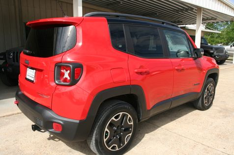 2015 Jeep Renegade Trailhawk in Vernon, Alabama