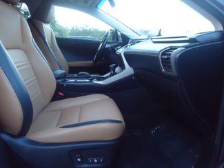 2015 Lexus NX 200t NAVIGATION. SUNROOF SEFFNER, Florida 14