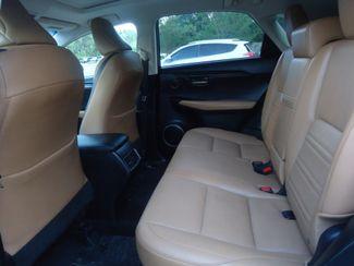 2015 Lexus NX 200t NAVIGATION. SUNROOF SEFFNER, Florida 16