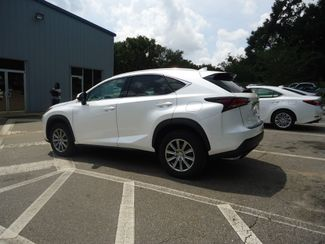 2015 Lexus NX 200t SEFFNER, Florida 10