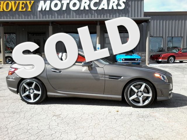 2015 Mercedes-Benz SLK 250 Boerne, Texas 0