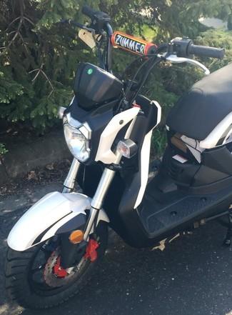2015 Taotao Zummer Moped / Scooter Blaine, Minnesota 4