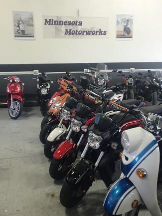 2015 Taotao Zummer Moped / Scooter Blaine, Minnesota