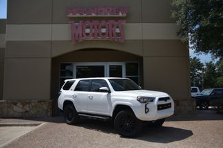 2015 Toyota 4Runner SR5 Central Alps Package in Arlington, Texas 76013