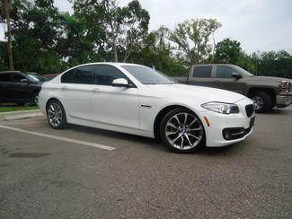2016 BMW 528i xDrive XI SEFFNER, Florida 8
