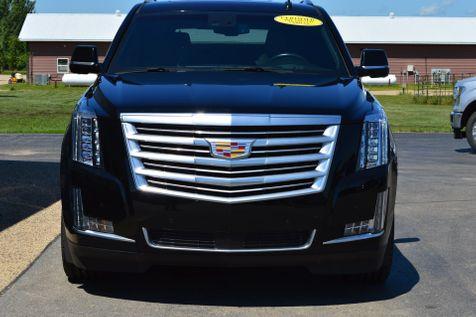2016 Cadillac Escalade Platinum in Alexandria, Minnesota