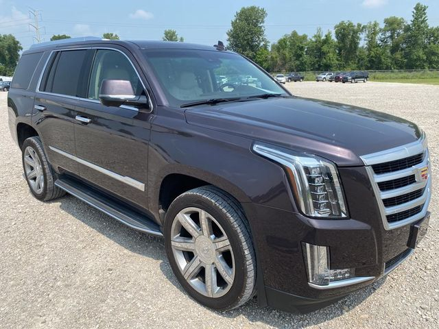 2016 Cadillac Escalade Luxury Collection in St. Louis, MO 63043
