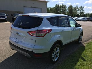 2016 Ford Escape SE Farmington, MN 1