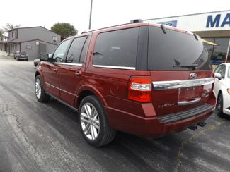 2016 Ford Expedition Platinum Warsaw, Missouri 4