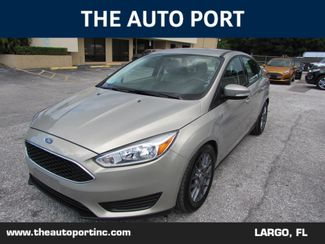 2016 Ford Focus SE in Clearwater Florida, 33773