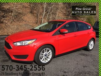 2016 Ford Focus in Pine Grove PA