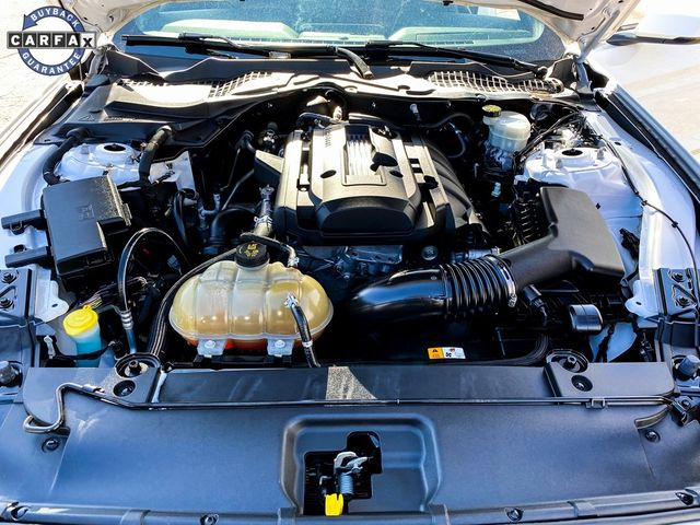 2016 Ford Mustang EcoBoost Premium Madison, NC 30
