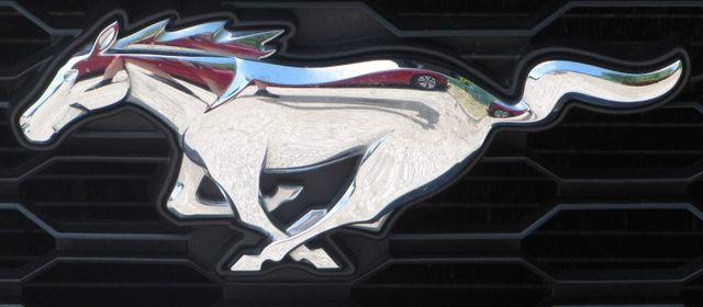 2016 Ford Mustang EcoBoost Premium St. Louis, Missouri 8