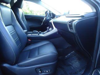 2016 Lexus NX 200t SEFFNER, Florida 17