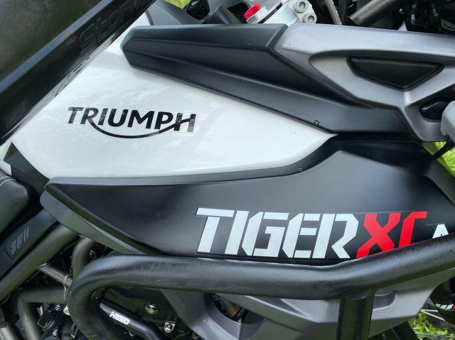 2016 Triumph Tiger 800 XCA in Dania Beach , Florida 33004