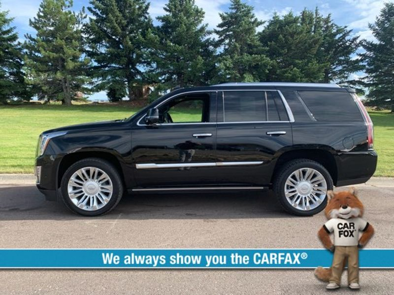 2017 Cadillac Escalade Platinum  city MT  Bleskin Motor Company   in Great Falls, MT