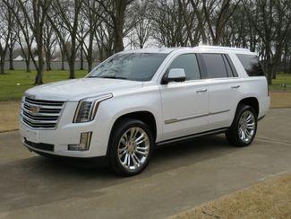 2017 Cadillac Escalade Platinum 4WD in Marion, Arkansas 72364