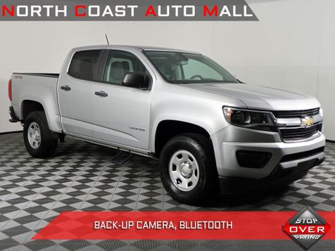 2017 Chevrolet Colorado 4WD WT in Cleveland, Ohio