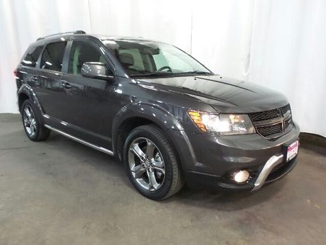 2017 Dodge Journey Crossroad Plus in Victoria, MN