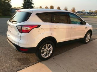2017 Ford Escape SE Farmington, MN 1