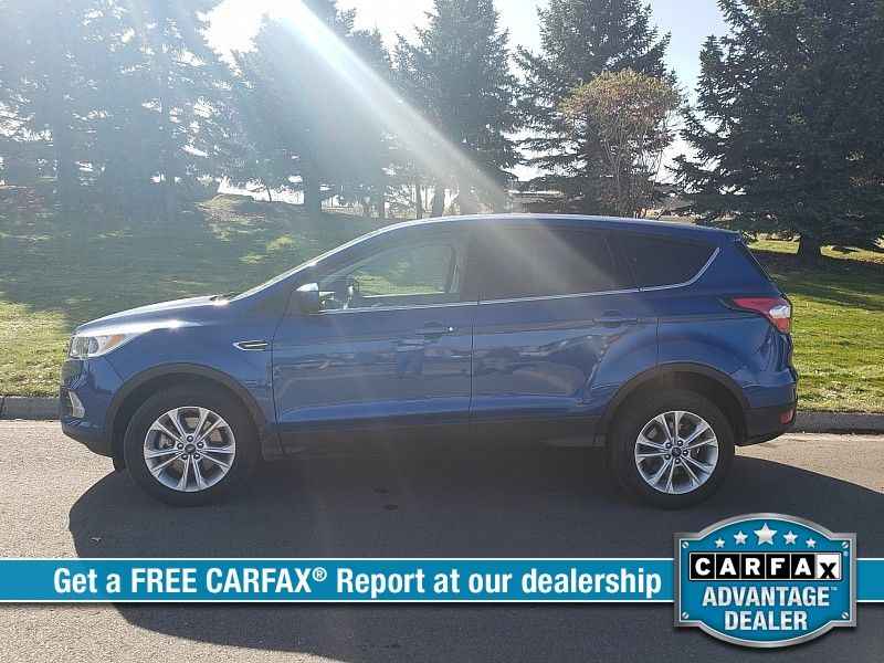 2017 Ford Escape 4d SUV 4WD SE  city MT  Bleskin Motor Company   in Great Falls, MT