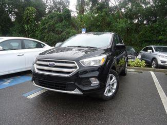 2017 Ford Escape SE SEFFNER, Florida 4