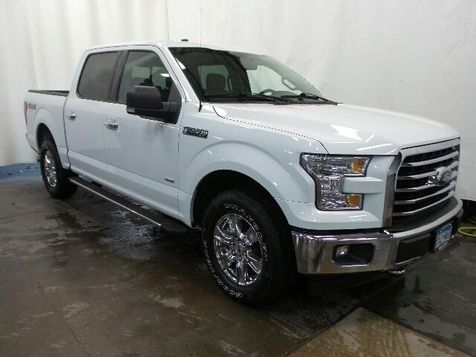 2017 Ford F-150 XLT in Victoria, MN