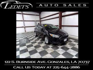 2017 Ford Focus SE - Ledet's Auto Sales Gonzales_state_zip in Gonzales