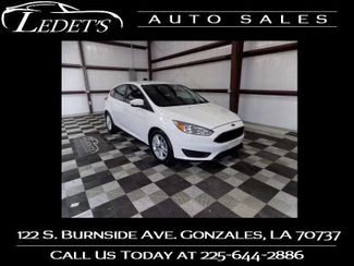 2017 Ford Focus SE - Ledet's Auto Sales Gonzales_state_zip in Gonzales