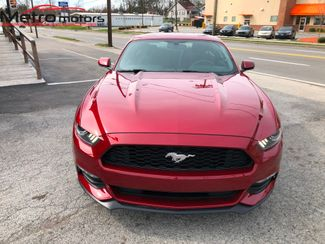 2017 Ford Mustang V6 Knoxville , Tennessee 4