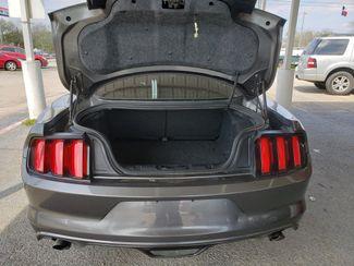 2017 Ford Mustang V6  city TX  Randy Adams Inc  in New Braunfels, TX