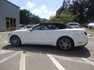 2017 Ford Mustang EcoBoost Premium Convertible SEFFNER, Florida 11
