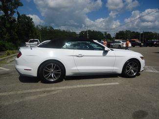 2017 Ford Mustang EcoBoost Premium Convertible SEFFNER, Florida 14