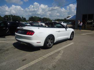 2017 Ford Mustang EcoBoost Premium Convertible SEFFNER, Florida 36