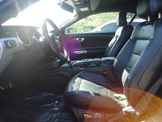 2017 Ford Mustang EcoBoost Premium SEFFNER, Florida 17