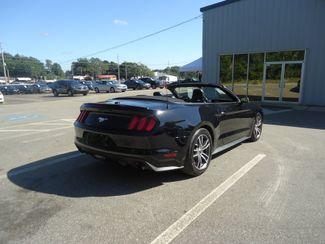 2017 Ford Mustang EcoBoost Premium SEFFNER, Florida 30