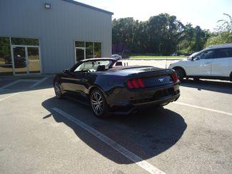 2017 Ford Mustang EcoBoost Premium SEFFNER, Florida 31