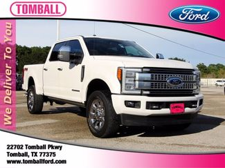 2017 Ford Super Duty F-250 SRW in Tomball, TX 77375