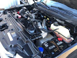 2017 Ford Super Duty F-350 SRW Pickup Platinum LINDON, UT 41