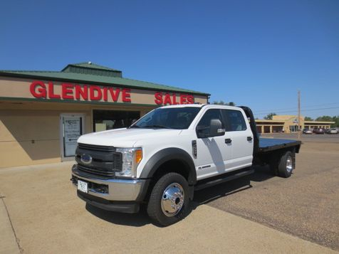 2017 Ford Super Duty F-550 DRW Chassis Cab XL in Glendive, MT