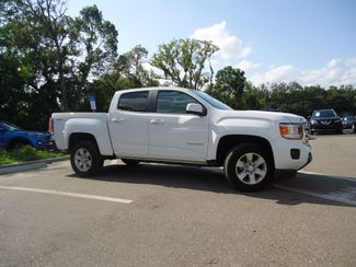 2017 GMC Canyon 4WD SLE SEFFNER, Florida 7