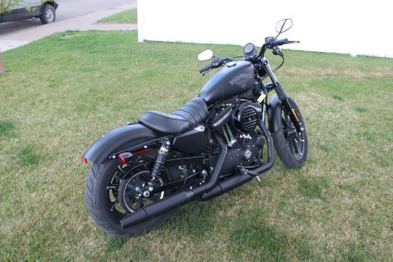 2017 Harley-Davidson XL883N HD  city MT  Bleskin Motor Company   in Great Falls, MT