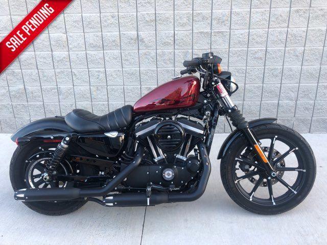 2017 Harley-Davidson XL883N Sportster Iron 883 in McKinney, TX 75070