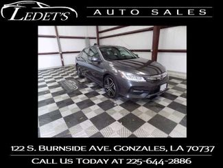 2017 Honda Accord Touring - Ledet's Auto Sales Gonzales_state_zip in Gonzales